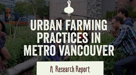 Diversity of practices for professional urban farmers