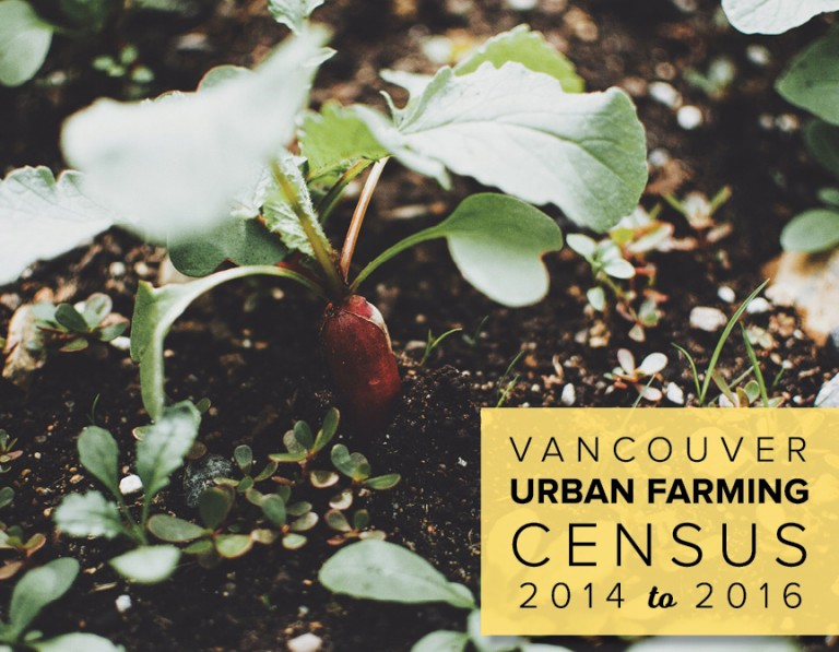 Vancouver Urban Farming Census cover - picture of a carrot